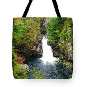 The Beauty Tote Bag