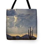 The Beauty Of The Desert  Tote Bag