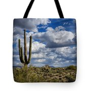 The Beauty Of The Desert Southwest Tote Bag