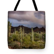 The Last Light  Tote Bag