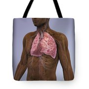 The Lungs And Cardiovascular System Tote Bag