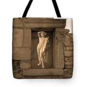 The Palaestra - Apollo Sanctuary Tote Bag