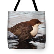 The White-throated Dipper Tote Bag