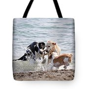 Three Dogs Playing On Beach Tote Bag