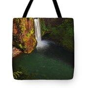 Toketee Falls - Oregon Tote Bag
