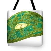 Tomato Chloroplast, Tem Tote Bag