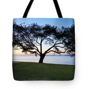 Tree By The Bay Tote Bag