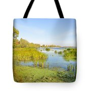 Trees And Reeds Close To The River Tote Bag