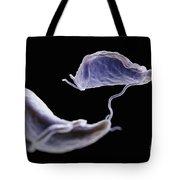 Trichomonas Vaginalis Tote Bag