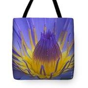 Tropic Water Lily 16 Tote Bag