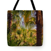 Tropical Forest Palm Trees In Sunlight Tote Bag
