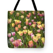 Tulips At Dallas Arboretum V92 Tote Bag