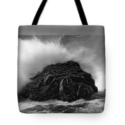Turned To Stone Tote Bag