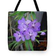 Vanda Orchid Tote Bag