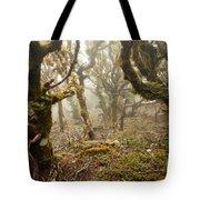 Virgin Mountain Rainforest Of Marlborough Nz Tote Bag