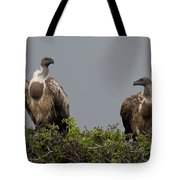 Vultures With Full Crops Tote Bag