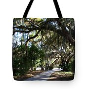 Walking Path Tote Bag