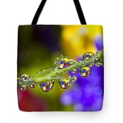 Water Drops On A Flower Stem Tote Bag