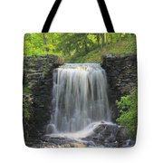 Water Fall Moore State Park Tote Bag