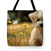 West Highland White Terrier Painting Tote Bag