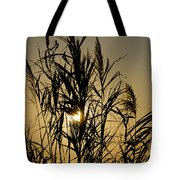 Whalehead Sunset Obx #3 Tote Bag