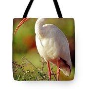 White Ibis Eudocimus Albus Tote Bag