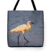 White Morph Redish Egret Tote Bag