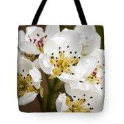 Beautiful White Spring Blossom Tote Bag