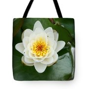 White Waterlily  Tote Bag