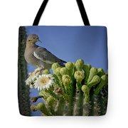 White-winged Dove Atop A Saguaro Tote Bag