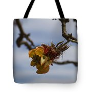Wiliwili Flowers - Erythrina Sandwicensis - Kahikinui Maui Hawaii Tote Bag
