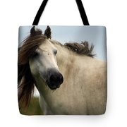 Wind In The Mane Tote Bag