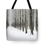 Winter Alley Tote Bag