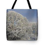 Winter In Oregon Tote Bag