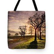 Winter Morning Shadows / Maynooth Tote Bag