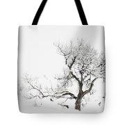 Winter Sage Tote Bag