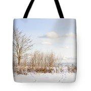 Winter Shore Of Lake Ontario Tote Bag