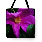 Withered Rose Tote Bag