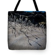 Woolly Willow Growing Wild In The Black Tote Bag