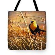 Yellow - Headed Blackbird Tote Bag