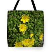 Yellow Ice Plant In Bloom Tote Bag