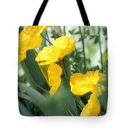 Yellow Iceland Poppy Tote Bag