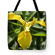 Yellow Water Iris Tote Bag