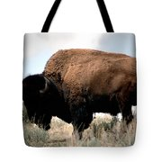 Yellowstone Bison Tote Bag