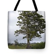 Yungabura Landscape Tote Bag