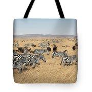 Zebra Migration Maasai Mara Kenya Tote Bag