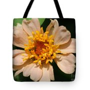 Zinnia From The Candy Mix Tote Bag
