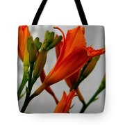 2013 Day Lilies Tote Bag