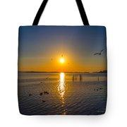 2014 03 02 01 Ft Walton Beach Fl Tote Bag