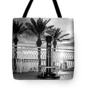 2014 11 11 01 B Bw Destin Pm 0306 Tote Bag